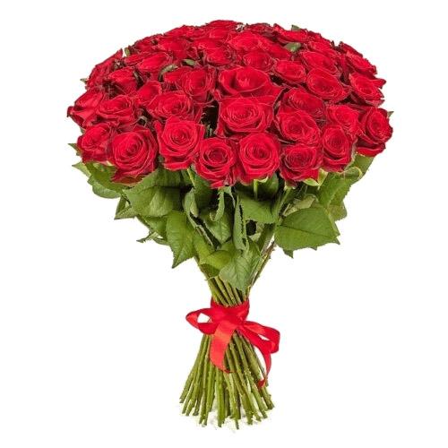 Фото товара 51 красная роза