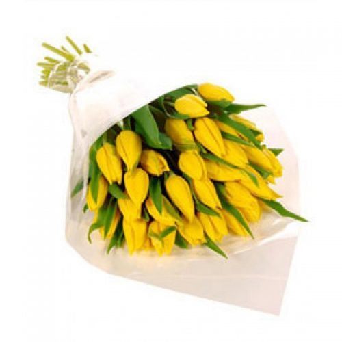 Фото товара 25 желтых тюльпанов