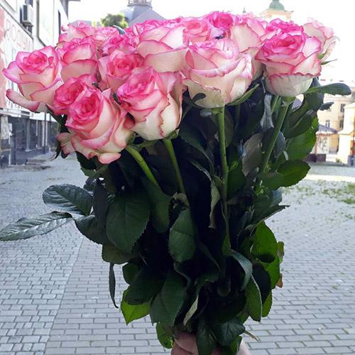 розовая роза джумилия в букете Королева фото