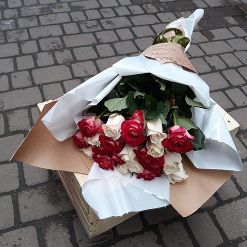 белые и красные розы фото