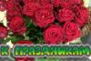 купить цветы кропивницкий