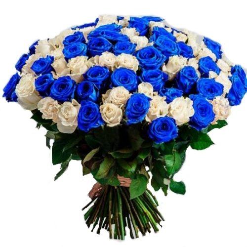 Фото товара 101 белая и синяя роза (крашеная)
