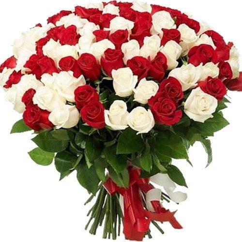 Фото товара 101 красная и белая роза