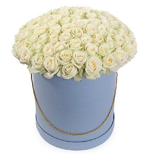 Фото товара 101 роза белая в шляпной коробке