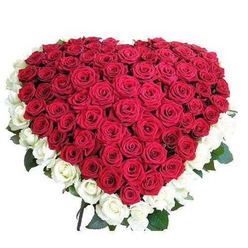 Фото товара 101 роза сердцем - белая, красная