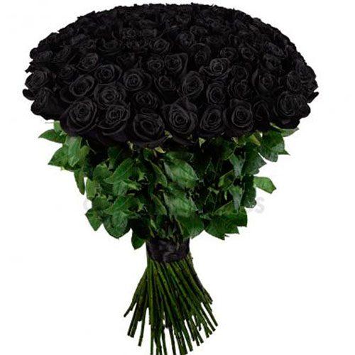 Фото товара 101 чёрная роза