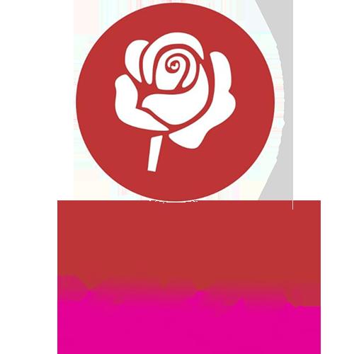 Подарки на Новый год 2021 в Кропивницком