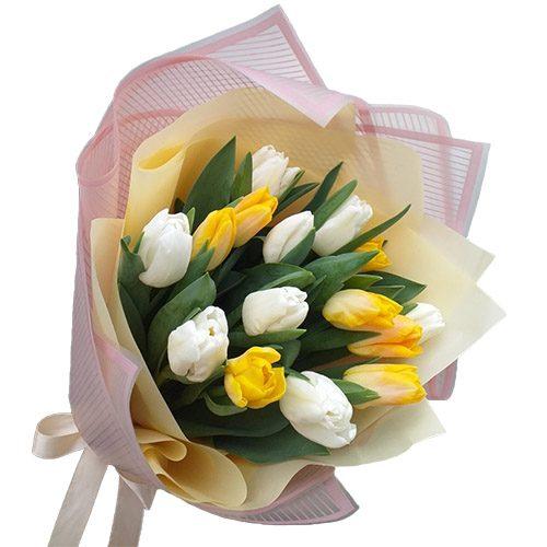 Фото товара 15 бело-жёлтых тюльпанов