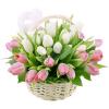 Фото товара 25 пурпурных тюльпанов