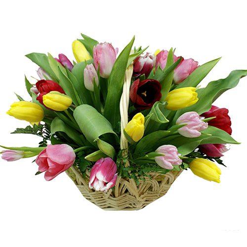 Фото товара 25 тюльпанов микс в корзине