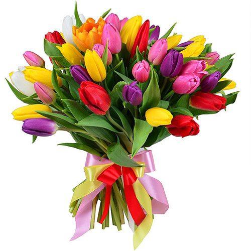 """Фото товара 35 тюльпанов """"Радужный микс"""" с лентой"""