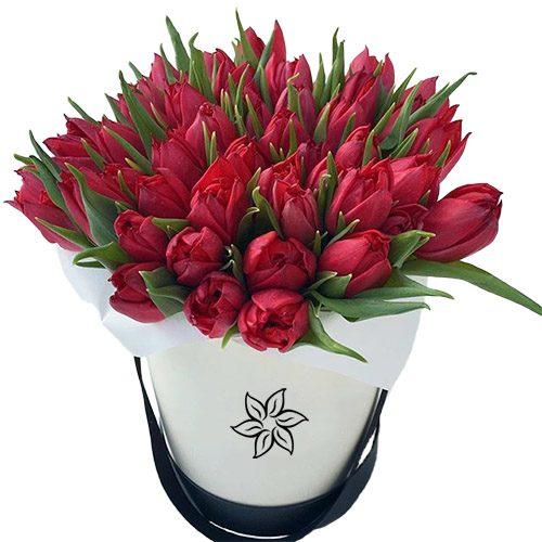 Фото товара 45 алых тюльпанов в коробке