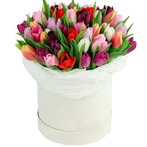 Фото товара 51 тюльпан ассорти в коробке