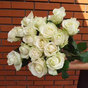 15 белых роз ко дню рождения