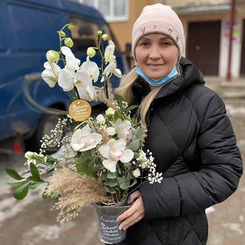орхидея с доставкой фотоотчёт